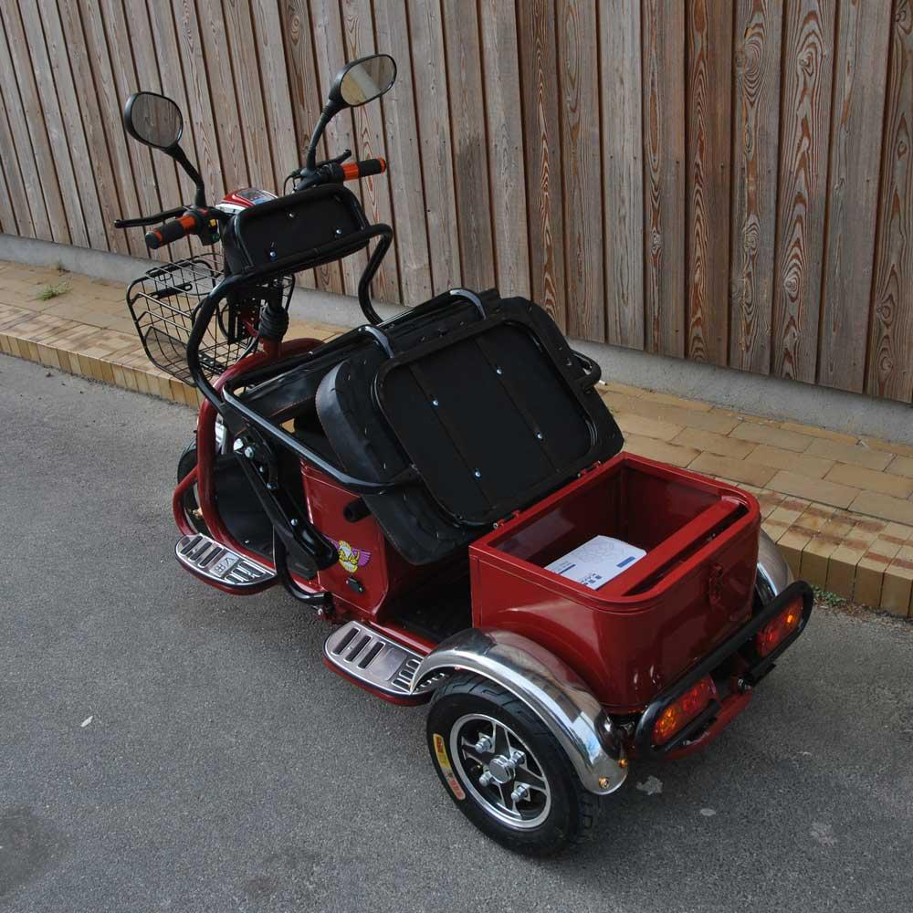 El-scooter model 1900